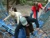 pfingstweekend2006-145