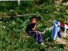 sola-1992-058