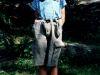 sola-1995-079
