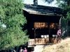 sola-1995-099